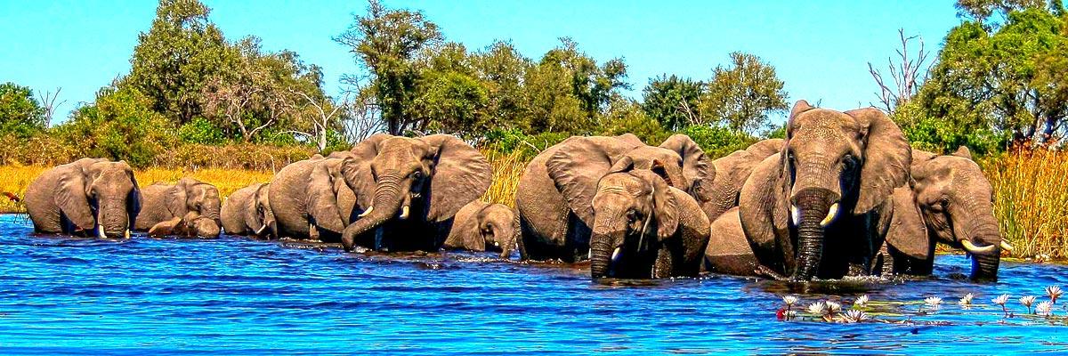 Africa-Albida-Tourism-Top-07.jpg