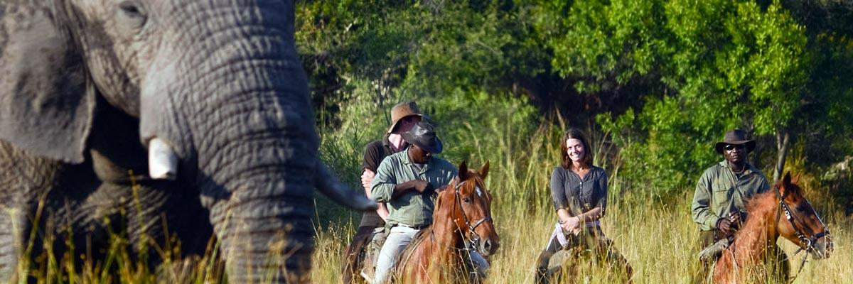 African-Horseback-Safaris-004.jpg