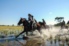 African-Horseback-Safaris-018.jpg