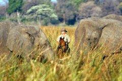 African-Horseback-Safaris-019.jpg