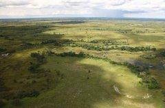a-botswana-safari-at-andbeyond-xudum-okavango-delta-lodge-5.jpg.950x0.jpg