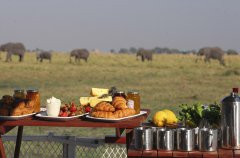 Chobe-under-canvas-2014-79.jpg