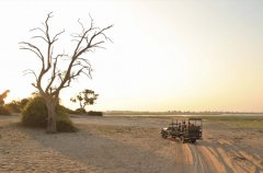 Chobe_under_canvas_gamedrive7.jpg
