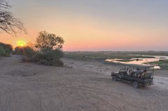 Chobe_under_canvas_gamedrive8.jpg