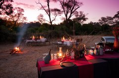 Elephant-Valley-Lodge-Bush-Dinner-3.jpg