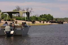 Entertainment---Elephant-Valley-Lodge---Chobe-River.jpg
