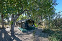 01BFOO-IM9001-footsteps-camp-900.jpg