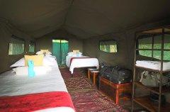 03BFOO-IM1303-footsteps-camp-1475.jpg