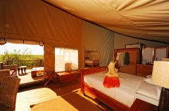 interior-family-tent_hi-res.jpg