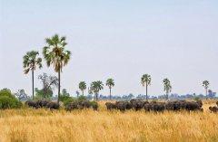 wildlife13-1024x680.jpg