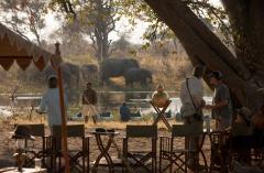 great_plains_explorers_camp_elephants-1024x682.png