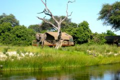 trails-of-botswana-039.jpg