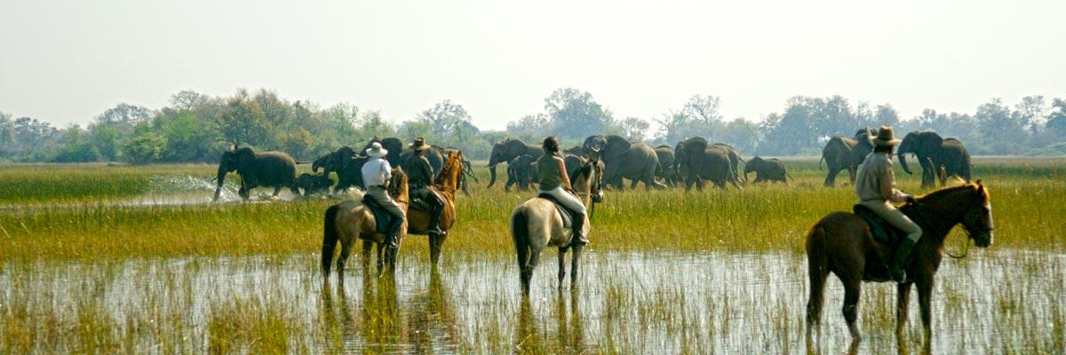 belmond-safari-heli-horse-05.jpg
