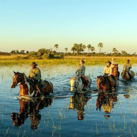 Helicopter and Horseback Safaris