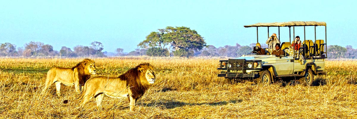 Wilderness-Safaris-001.jpg