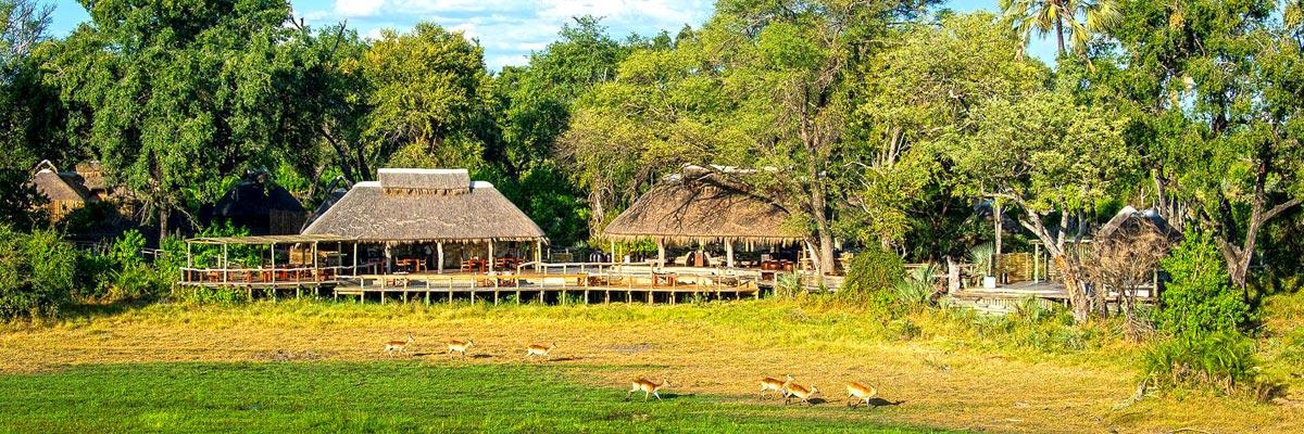 Wilderness-Safaris-005.jpg