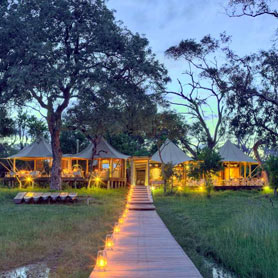 Luxury Safari in Botswana