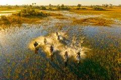 African-Horseback-Safaris-014.jpg