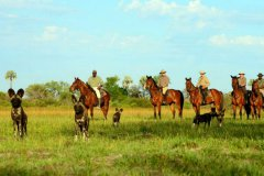 African-Horseback-Safaris-015.jpg