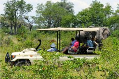 African-Horseback-Safaris-021.jpg