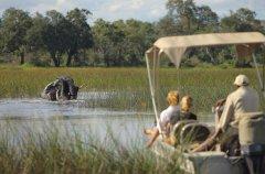 a-botswana-safari-at-andbeyond-xudum-okavango-delta-lodge-23.jpg.950x0.jpg