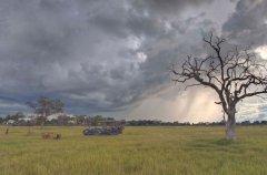a-botswana-safari-at-andbeyond-xudum-okavango-delta-lodge-37.jpg.950x0.jpg