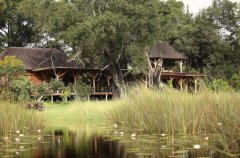 a-botswana-safari-at-andbeyond-xudum-okavango-delta-lodge-50.jpg.950x0.jpg