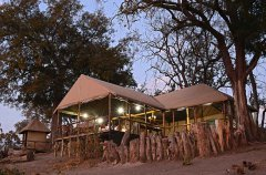 camp-linyanti-camp-info1.jpg