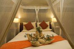 interior-tent_hi-res.jpg
