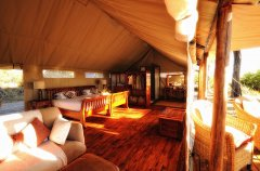 interior-std-tent_hi-res.jpg