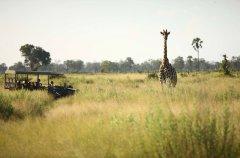Nxabega-2014-259.jpg