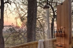 a-botswana-safari-at-andbeyond-sandibe-okavango-delta-lodge-54.jpg.950x0.jpg