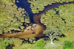 activities-scenic-helicopter-flight.jpg.950x0.jpg