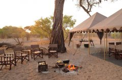 a-botswana-safari-at-andbeyond-savute-under-canvas-27.jpg.950x0.jpg