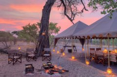 a-botswana-safari-at-andbeyond-savute-under-canvas-28.jpg.950x0.jpg