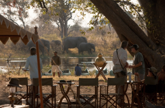 great_plains_explorers_camp_elephants-1024x682.png
