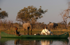 great_plains_explorers_canoe_elephant-1024x682.png