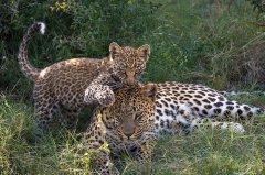 Jao_Reserve_2015-06-118.jpg