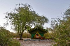 2-tuskers-bush-camp-tent5.jpg