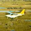 Botswana Flying Safari