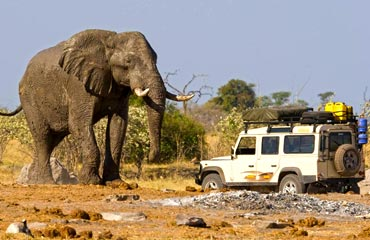 Self Drives Safaris